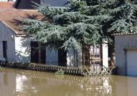 inondation ecologie