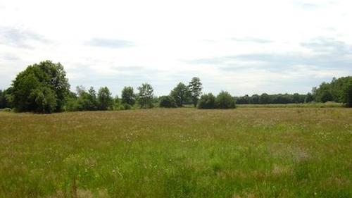 La safer peut prempter un terrain agricole devenu btir cassation for Construction terrain agricole