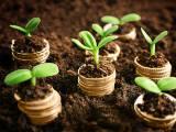 Ecologie et épargne