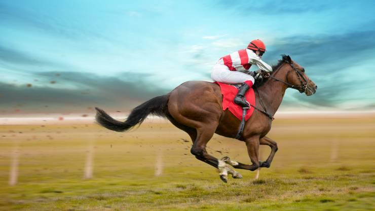 Un cheval de course